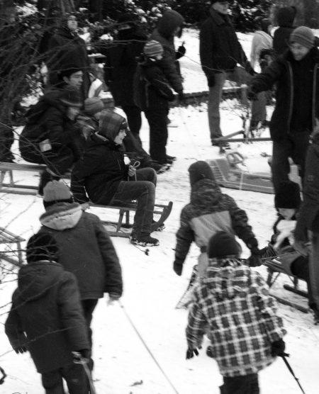 go sledding...