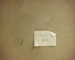 20111107121824 dubistgut img553 in